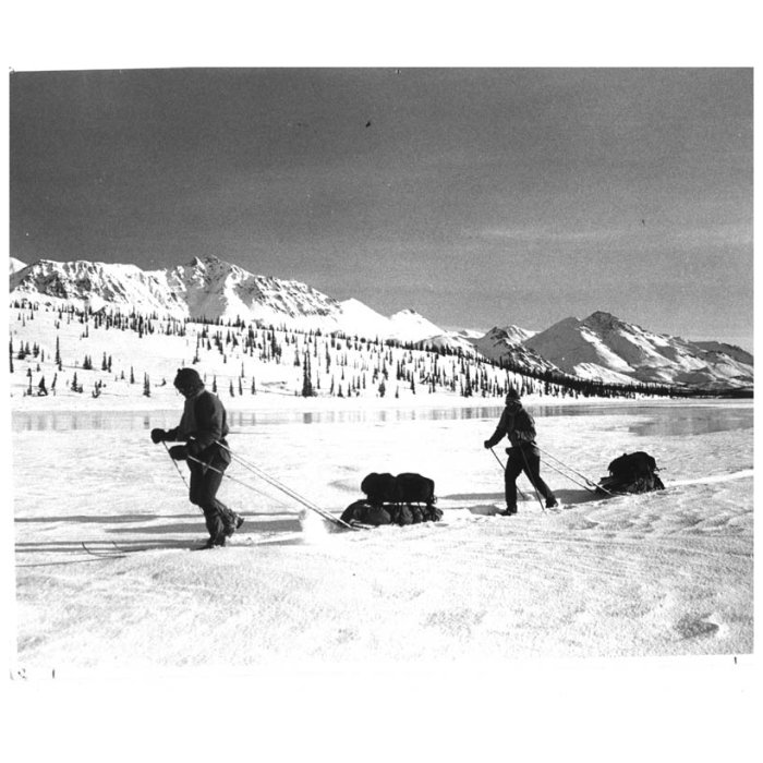 Backcountry Sleds People Skiing on Flat Ground and Using Sleds to Pull Their Equipment